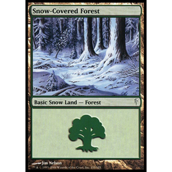 Magic löskort: Coldsnap: Snow-Covered Forest