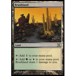 Magic löskort: 10th Edition: Brushland